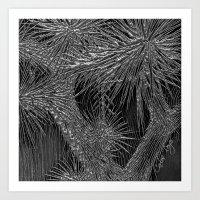 Joshua Tree Plata by CREYES Art Print