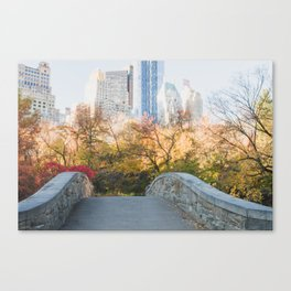 Central Park as the City Wakes Up Canvas Print