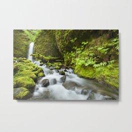 I - Remote waterfall in lush rainforest, Columbia River Gorge, Oregon, USA Metal Print