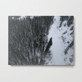Whistler Metal Print