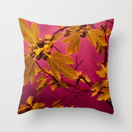 Fig No.3 Throw Pillow