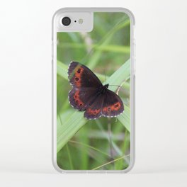 Arran Brown butterfly Clear iPhone Case