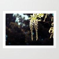 Hanging Flowers Art Print