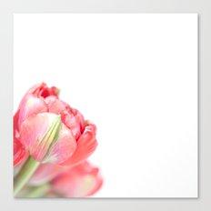 Peony Tulip... (2) Canvas Print
