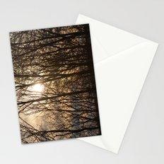 Iowa Winter Sun Stationery Cards
