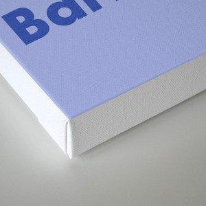 Blue Barnacles Canvas Print