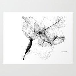 Don Mirlo Art Print