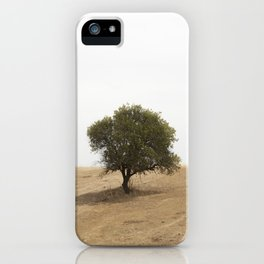 The solitary holm oak iPhone Case