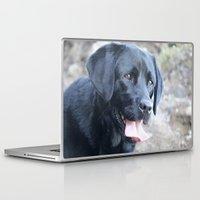 labrador Laptop & iPad Skins featuring Black Labrador by MehrFarbeimLeben