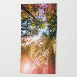 California Redwoods Sun-rays and Sky Beach Towel