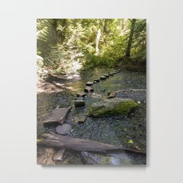 A Path Across Metal Print