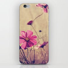 sunny cosmos iPhone & iPod Skin