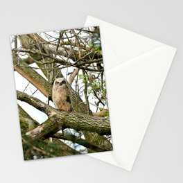 From his podium Stationery Cards