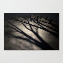 Kyu Canvas Print
