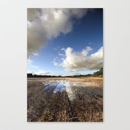 Flooded Fields Canvas Print