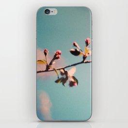 dreaming 3 iPhone Skin