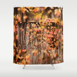 Vitaceae family ivy wall abstract Parthenocissus quinquefolia Shower Curtain