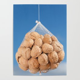 Bag of nuts Poster