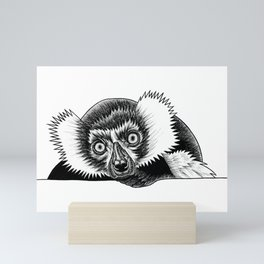 Black and white ruffed lemur Mini Art Print