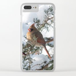 Sunny Winter Cardinals (square) Clear iPhone Case