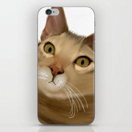 Joey Kitten iPhone Skin