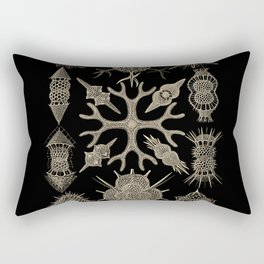 """""""Spumellaria"""" from """"Art Forms of Nature"""" by Ernst Haeckel Rectangular Pillow"""