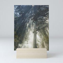 Smoke and Sun Filtered Through a Fir Tree Mini Art Print