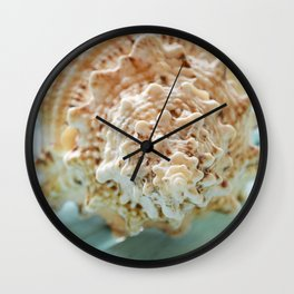 Ribbed Cantharus Wall Clock