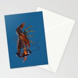 Calling Salvador (colour) Stationery Cards