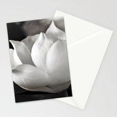 Magnolia Grandiflora Blossom Stationery Cards