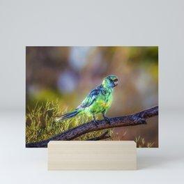 Mallee Ringneck Parrot Mini Art Print