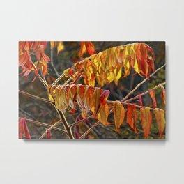 Fall Sumac Leaves during a Michigan Autumn Metal Print