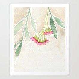 Gum Tree Sketch Art Print