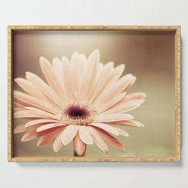 Peach Daisy Flower Photography, Brown Nature Floral Botanical Photo Serving Tray