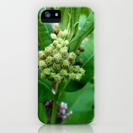 Just a Weed iPhone Case