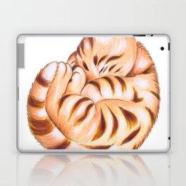 Cute Ginger Tabby Fur Ball Laptop & iPad Skin