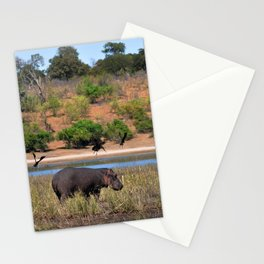 Hippo. Stationery Cards