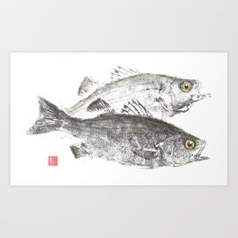 White Bass Pair Art Print