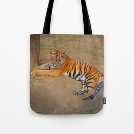 The Gaze of a Tiger Tote Bag