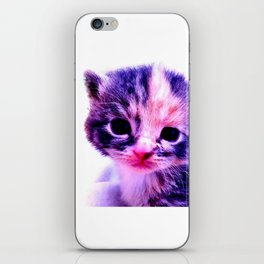 Blue Pink Cute Little Cat iPhone Skin