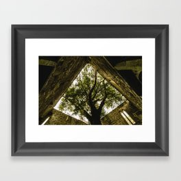 Under the Yew Framed Art Print
