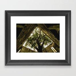 Under the Yew Framed Art Print