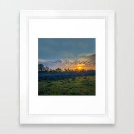 Daybreak In The Land Of Bluebonnets Framed Art Print