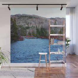 River in Nature Wall Mural