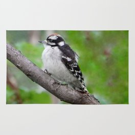 Downy Woodpecker (juvenile male) Rug