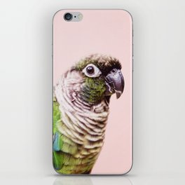 Parot Photography | Peek-a-boo | Tropical | Wildlife | Bird | Blush Pink iPhone Skin