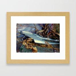 Up Pettyscope Framed Art Print