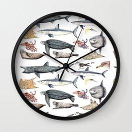Marine wildlife Wall Clock