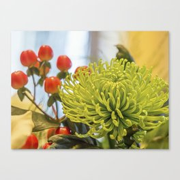 Chrysanthemum. Canvas Print