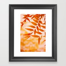 Sun Kissed Framed Art Print